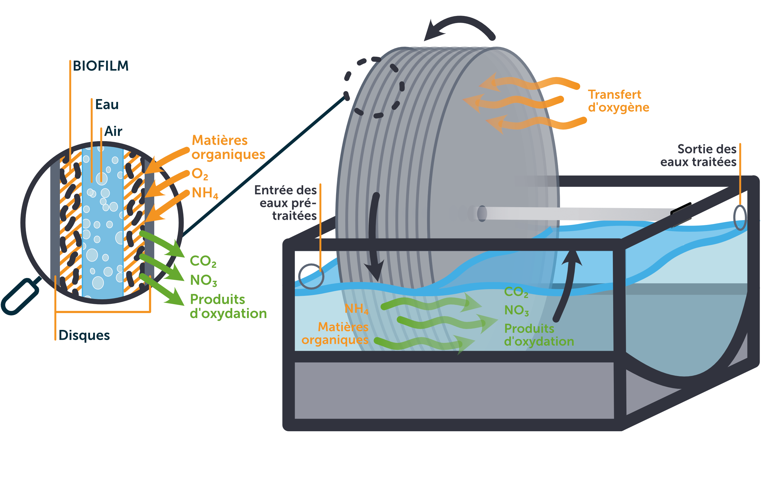 Comment fonctionne un biodisque?